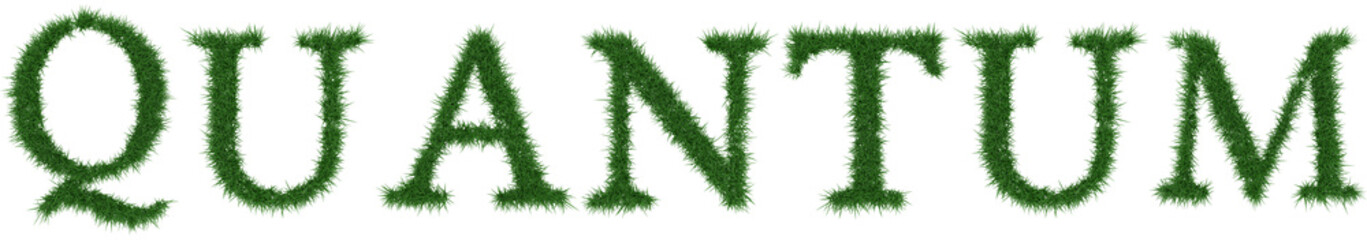 Quantum - 3D rendering fresh Grass letters isolated on whhite background.