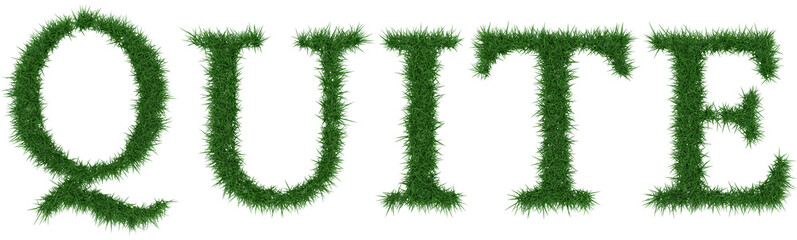 Quite - 3D rendering fresh Grass letters isolated on whhite background.