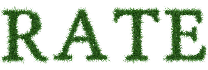 Rate - 3D rendering fresh Grass letters isolated on whhite background.