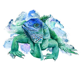 Green iguana isolated on white background. Watercolor. Illustration. Image. Picture