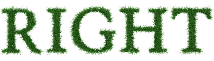Right - 3D rendering fresh Grass letters isolated on whhite background.
