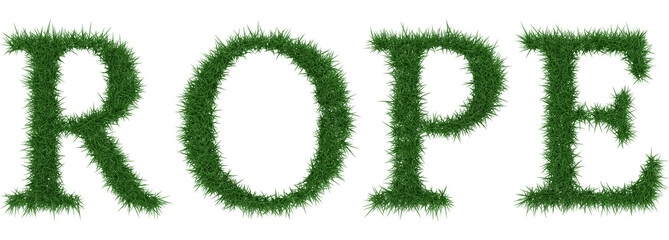 Rope - 3D rendering fresh Grass letters isolated on whhite background.