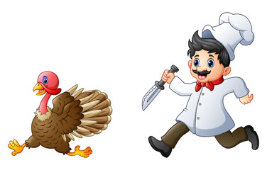 Cartoon chef chasing a turkey