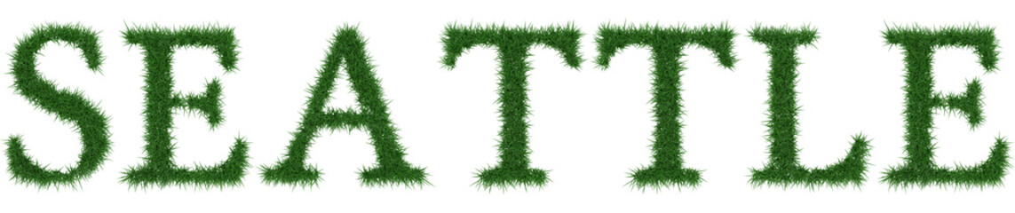 Seattle - 3D rendering fresh Grass letters isolated on whhite background.