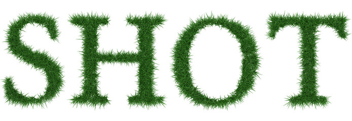 Shot - 3D rendering fresh Grass letters isolated on whhite background.
