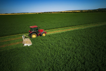 Industrial Tractor mowing green field, agriculture concept