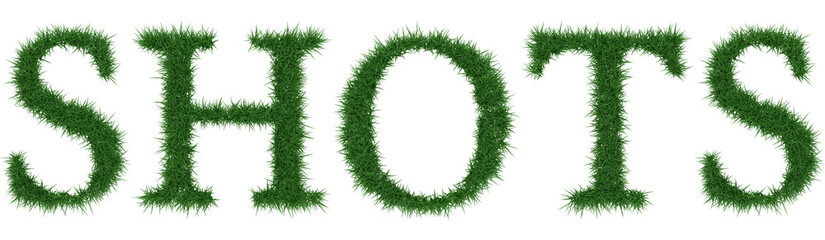 Shots - 3D rendering fresh Grass letters isolated on whhite background.