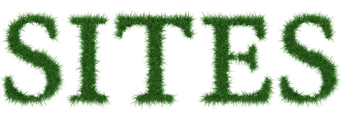 Sites - 3D rendering fresh Grass letters isolated on whhite background.