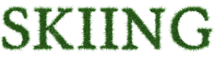 Skiing - 3D rendering fresh Grass letters isolated on whhite background.