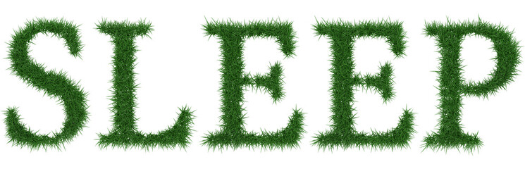 Sleep - 3D rendering fresh Grass letters isolated on whhite background.