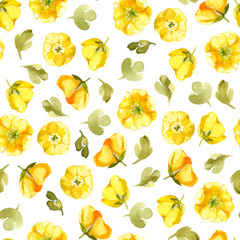 Seamless pattern of watercolor yellow flower isolate on white background. Wildflowers for wedding cards.
