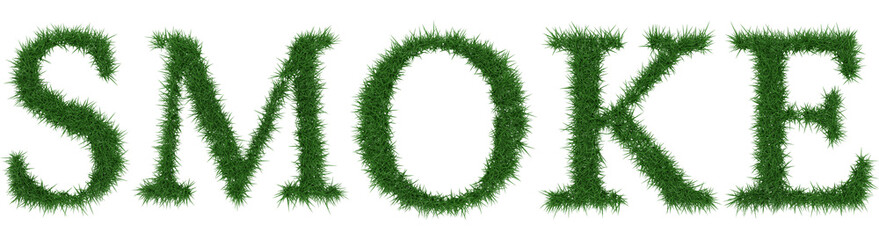 Smoke - 3D rendering fresh Grass letters isolated on whhite background.