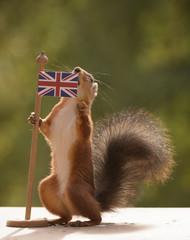 squirrel holding a Brittish Flag