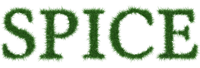 Spice - 3D rendering fresh Grass letters isolated on whhite background.