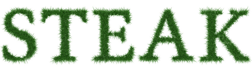 Steak - 3D rendering fresh Grass letters isolated on whhite background.