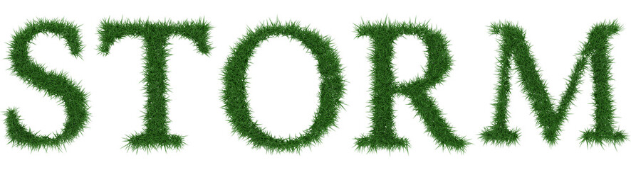 Storm - 3D rendering fresh Grass letters isolated on whhite background.