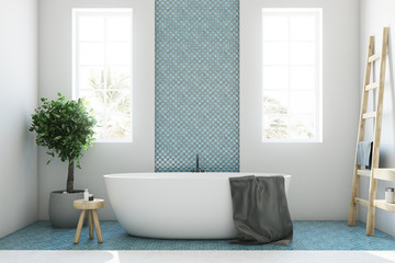 Blue and white bathroom, white tub closeup