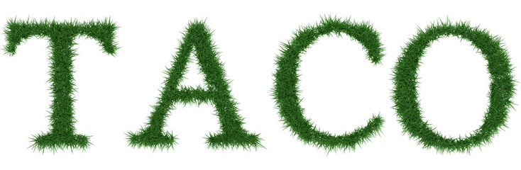 Taco - 3D rendering fresh Grass letters isolated on whhite background.