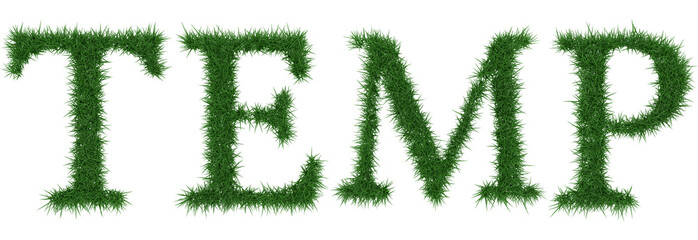 Temp - 3D rendering fresh Grass letters isolated on whhite background.