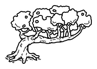 old tree / cartoon vector and illustration, black and white, hand drawn, sketch style, isolated on white background.