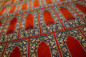 Foto auf Leinwand Katze Red Carpet in a Mosque