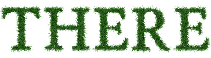 There - 3D rendering fresh Grass letters isolated on whhite background.