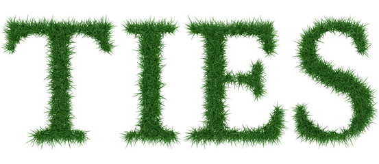 Ties - 3D rendering fresh Grass letters isolated on whhite background.