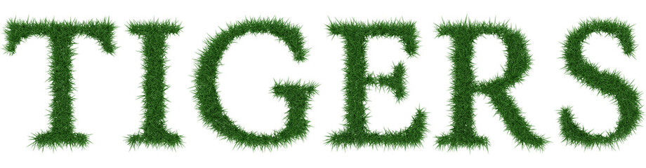 Tigers - 3D rendering fresh Grass letters isolated on whhite background.