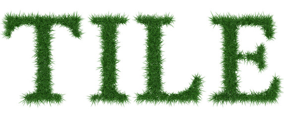 Tile - 3D rendering fresh Grass letters isolated on whhite background.