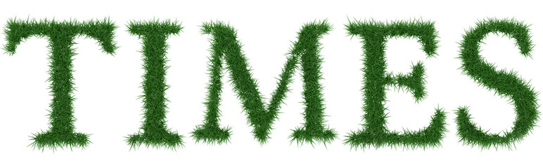 Times - 3D rendering fresh Grass letters isolated on whhite background.