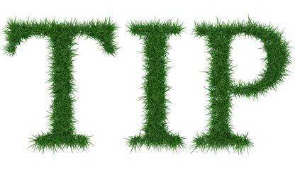 Tip - 3D rendering fresh Grass letters isolated on whhite background.