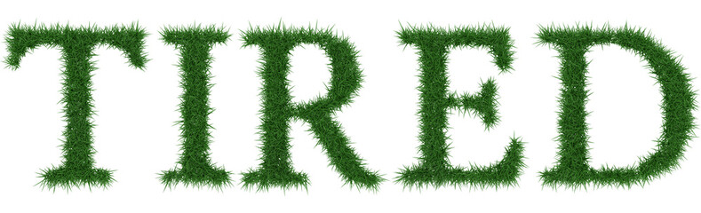Tired - 3D rendering fresh Grass letters isolated on whhite background.