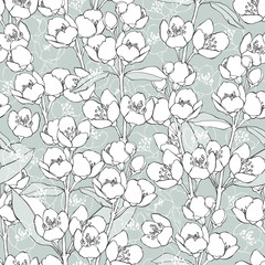 Seamless pattern with blossoming branches of jasmine.  Vector illustration.