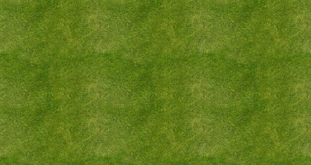 Soccer football field grass background