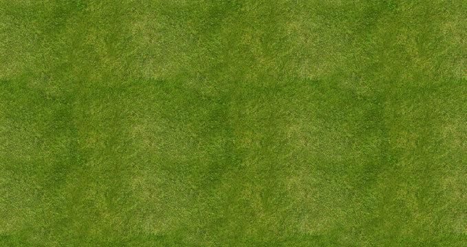 Soccer football field grass background