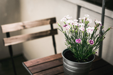 Bucket of Flowers on a Wooden Table with a Wooden Chair
