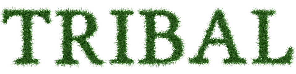 Tribal - 3D rendering fresh Grass letters isolated on whhite background.