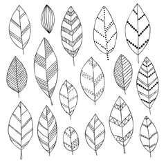 Beautiful black and white set of hand drawn doodle leaves Isolated sketch for design background greeting cards and invitation to the wedding, birthday, mother s day and other seasonal autumn holidays