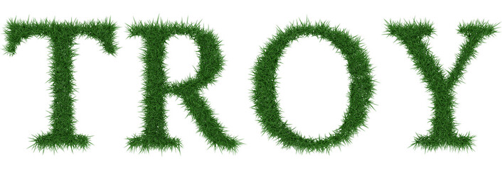 Troy - 3D rendering fresh Grass letters isolated on whhite background.