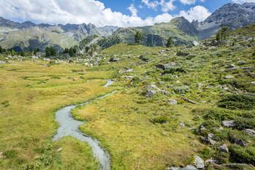 Un ruisseau de montagne au milieu de l'herbe avec des montagnes en arrière plan