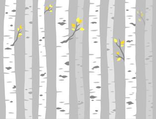 Aspen tree pattern