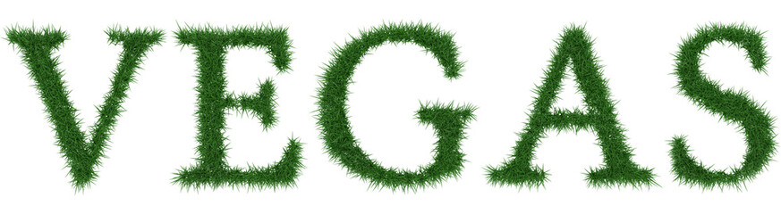 Vegas - 3D rendering fresh Grass letters isolated on whhite background.