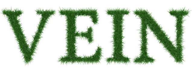 Vein - 3D rendering fresh Grass letters isolated on whhite background.