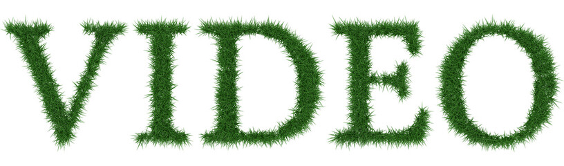 Video - 3D rendering fresh Grass letters isolated on whhite background.