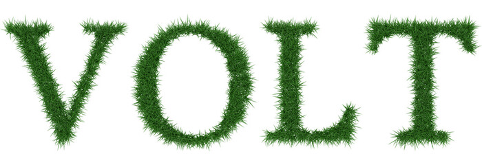 Volt - 3D rendering fresh Grass letters isolated on whhite background.