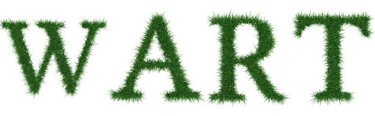 Wart - 3D rendering fresh Grass letters isolated on whhite background.
