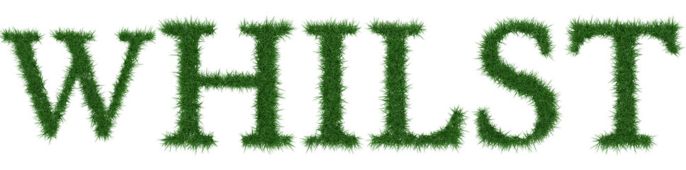 Whilst - 3D rendering fresh Grass letters isolated on whhite background.