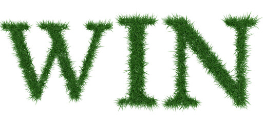 Win - 3D rendering fresh Grass letters isolated on whhite background.