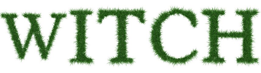 Witch - 3D rendering fresh Grass letters isolated on whhite background.