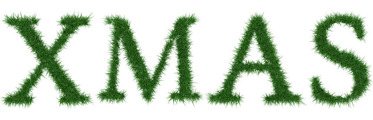 Xmas - 3D rendering fresh Grass letters isolated on whhite background.